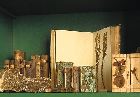 NMO – Naturkundemuseum Ostbayern – Geschichte – Holzbibliothek Candidus Huber